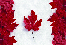 Image of Neden Kanada Kültür Merkezi ?